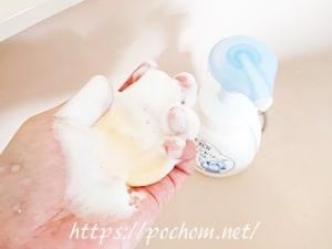 ハンドソープでスポンジを洗う